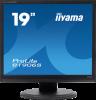 Ecran plat LCD 19 pouces 1280 x 1024 Multimédia, qualité TN LCD, 5 ms, iiyama VGA & DVI-D noir (Pivot et pied réglable)